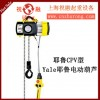Yale Chain Electric Hoist | CPVF Yale Electric Hoist | One Day Delivery