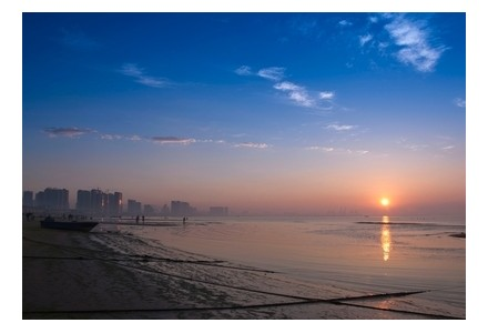 天下铝工业看渤海湾:冷轧板带
