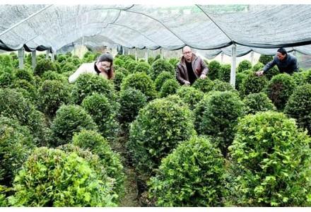 《绿色产业指导目录(2019年版)》为有色行业绿色产业发展指明方向