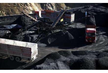 限制進口立竿見影 國內煤市明顯轉好