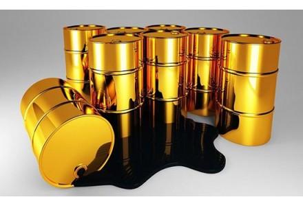 天津口岸上半年原油进口量超1100万吨