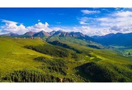 看山东淄博如何实现绿色矿山建设全覆盖