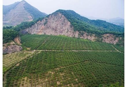 细微之处见真功 ——广东惠东嘉华材料有限公司石矿场创建绿色矿山纪实