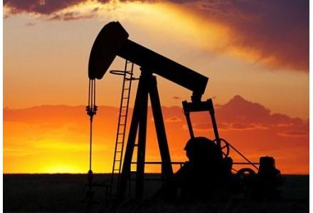 今年油价仍呈震荡走势