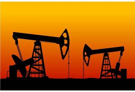 """转型还是应对?石油公司何以发力""""碳中和"""""""
