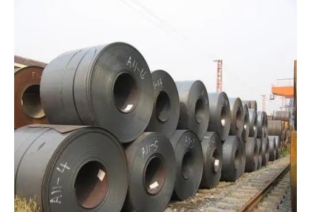 任庆平预计:今年钢价将比去年略有上升