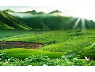 绿色矿业示范区建设的郴州试验