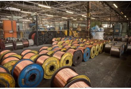张海英:加快新能源产业发展
