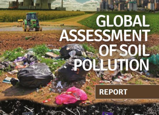 《全球土壤污染评估》报告发布