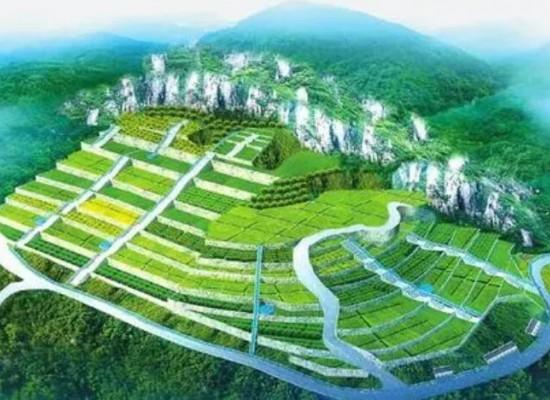 嵩县山金公司致力于打造矿山家园文化