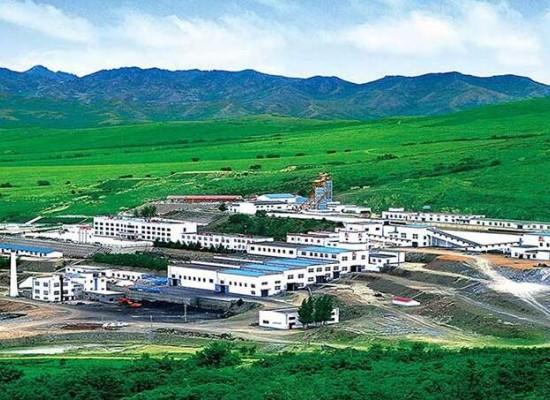 2021年度全球矿业公司40强中国8家企业上榜